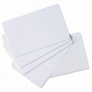 Carte PVC - ZEBRA